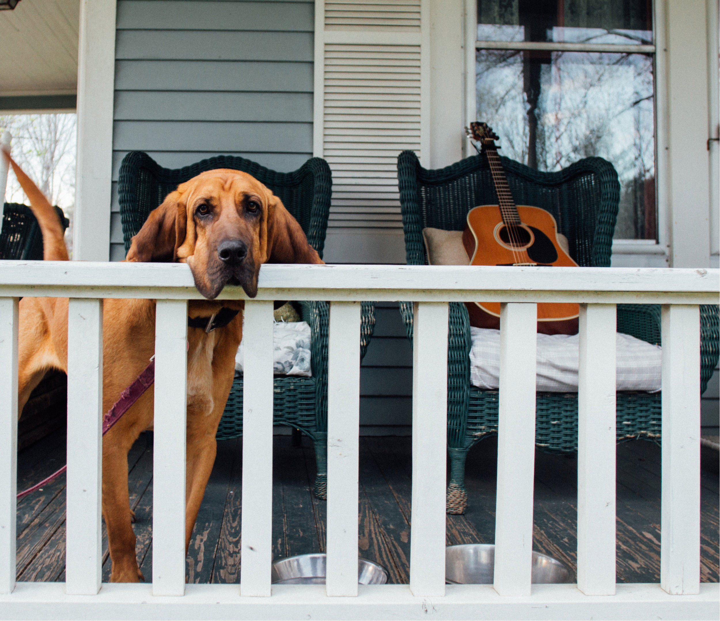 Front Porch | BEB 380 — OnTheHORN