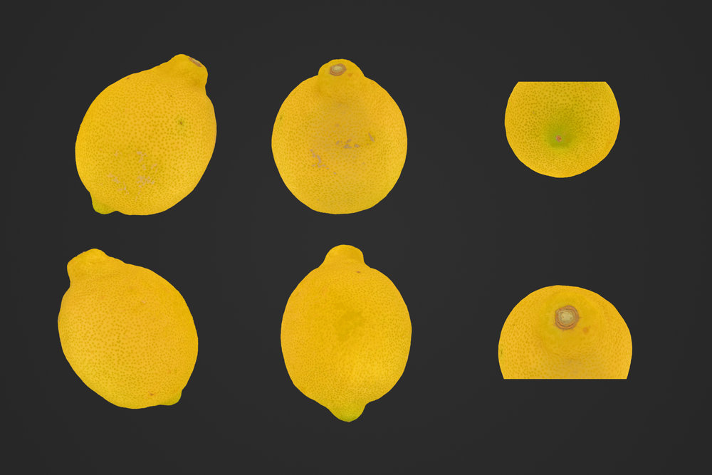 Lemon_1_1.jpg