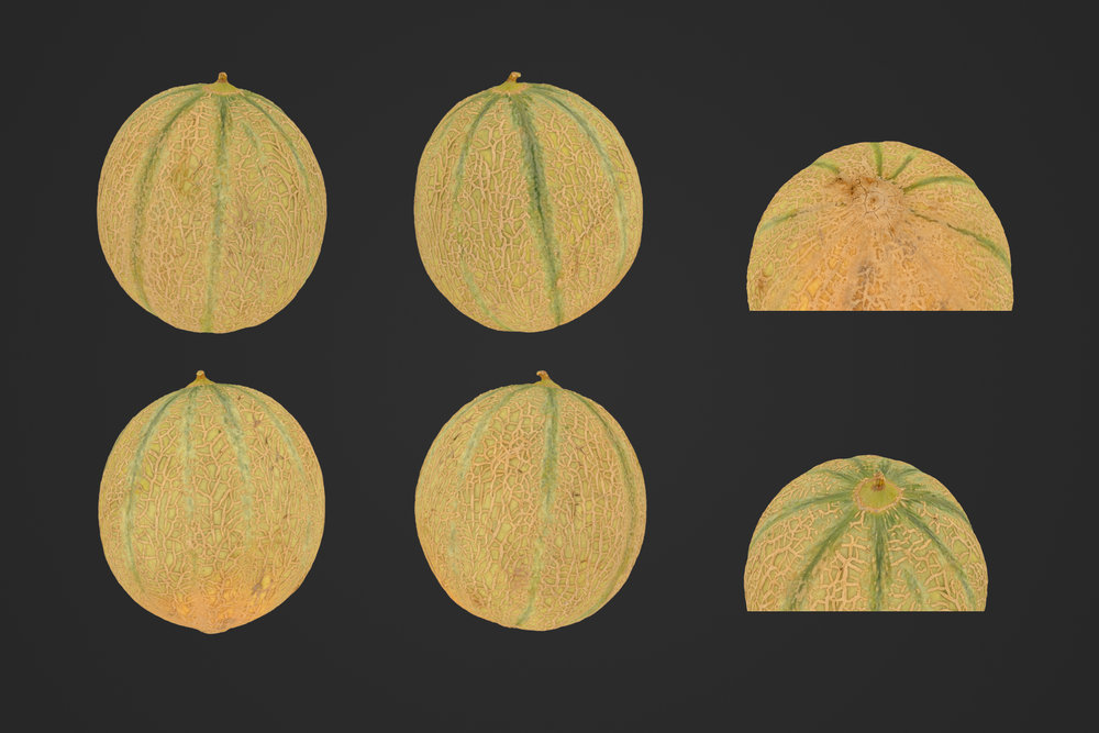 Melon_1_1.jpg