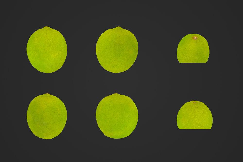 Lime_1_1.jpg