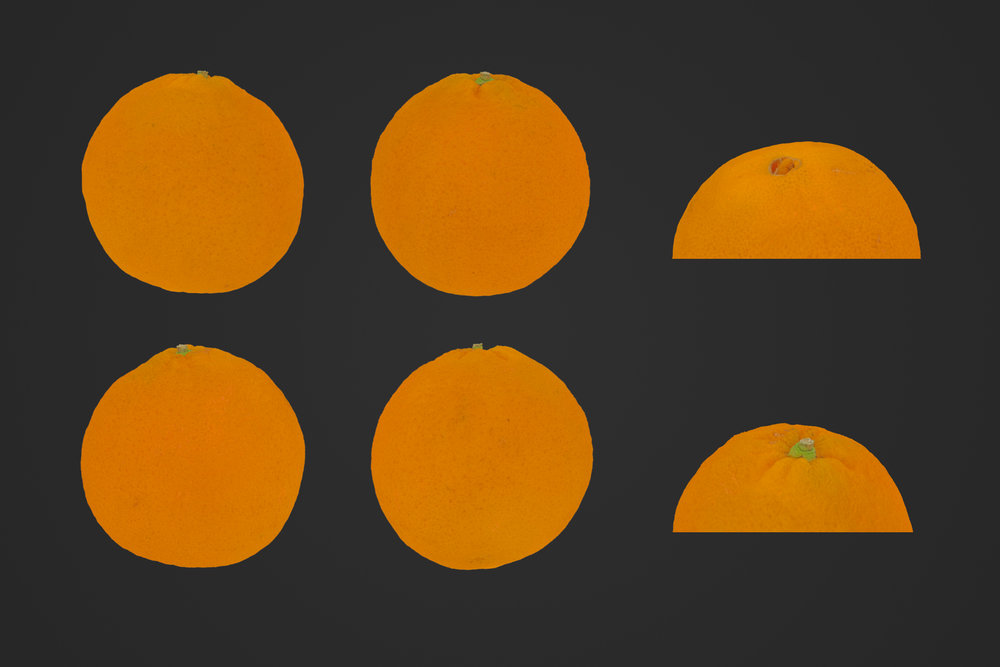 Orange_1_1.jpg
