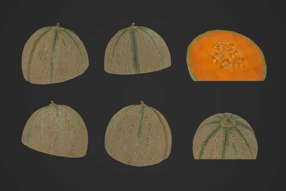 Melon_Half_1_1.jpg