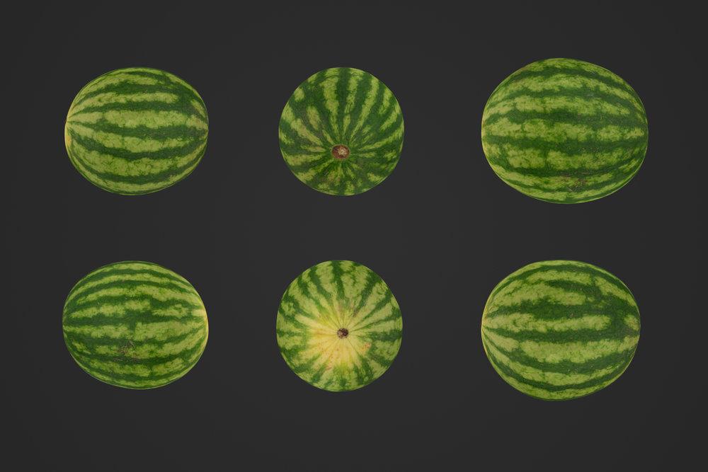 Watermelon_1_1.jpg