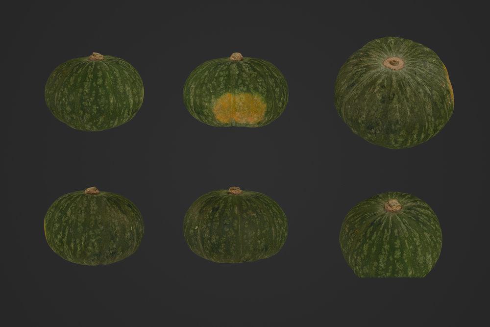 African_Melon_1_1.jpg
