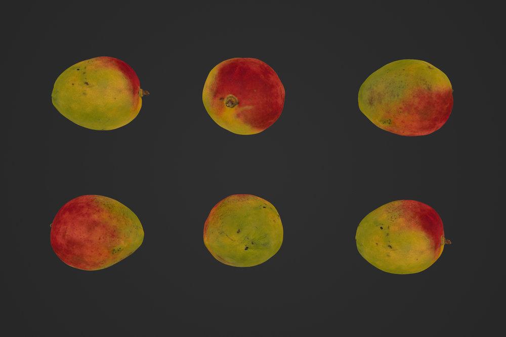 Mango_1_1.jpg