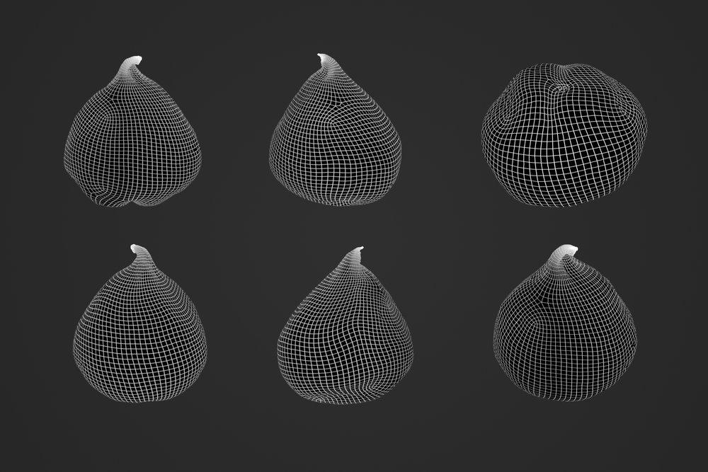 Fig_1_2.jpg