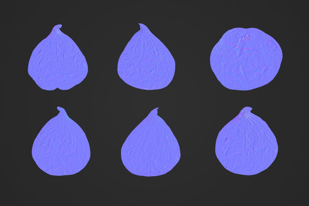 Fig_1_3.jpg