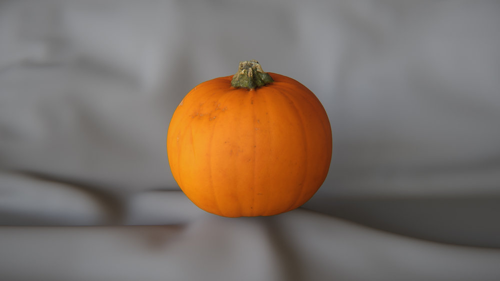Small_Pumpkin_1_Preview.jpg