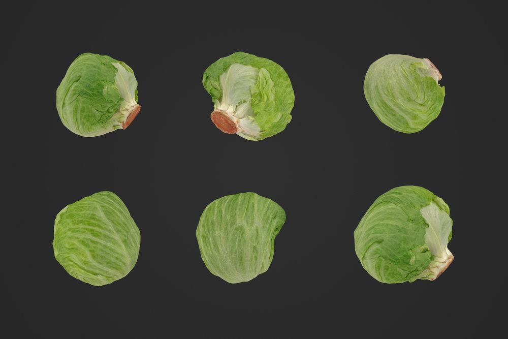 Iceberg_Lettuce_1_1.jpg