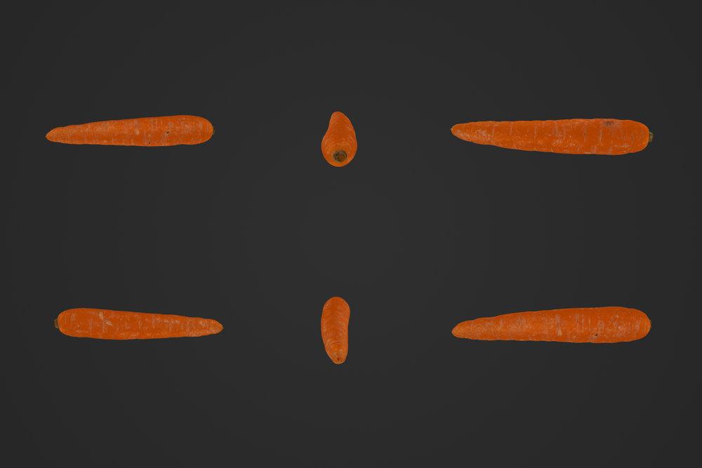 Carrot_02_1.jpg