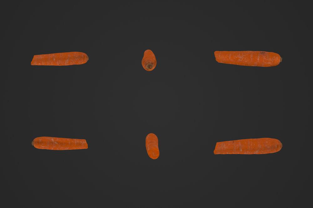 Carrot_2_1.jpg