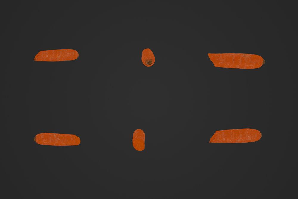 Carrot_2_Bite_2_1.jpg