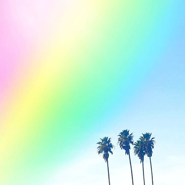 Hope you had a colorful weekend! 🌈🌴🌈