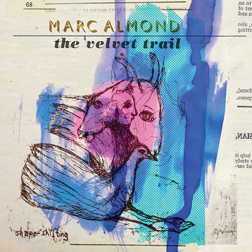 Marc-almond-velvet-trail.jpg