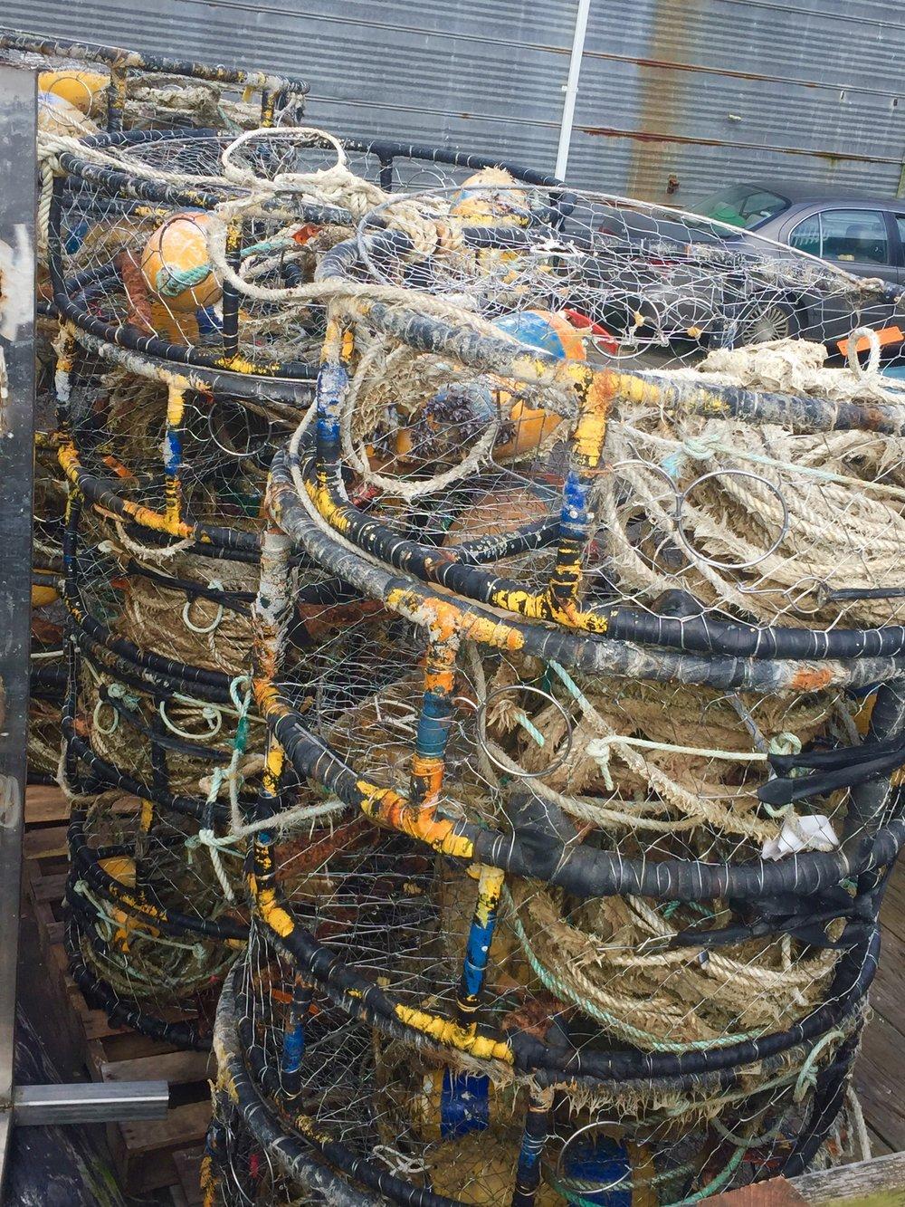 crabbing nets