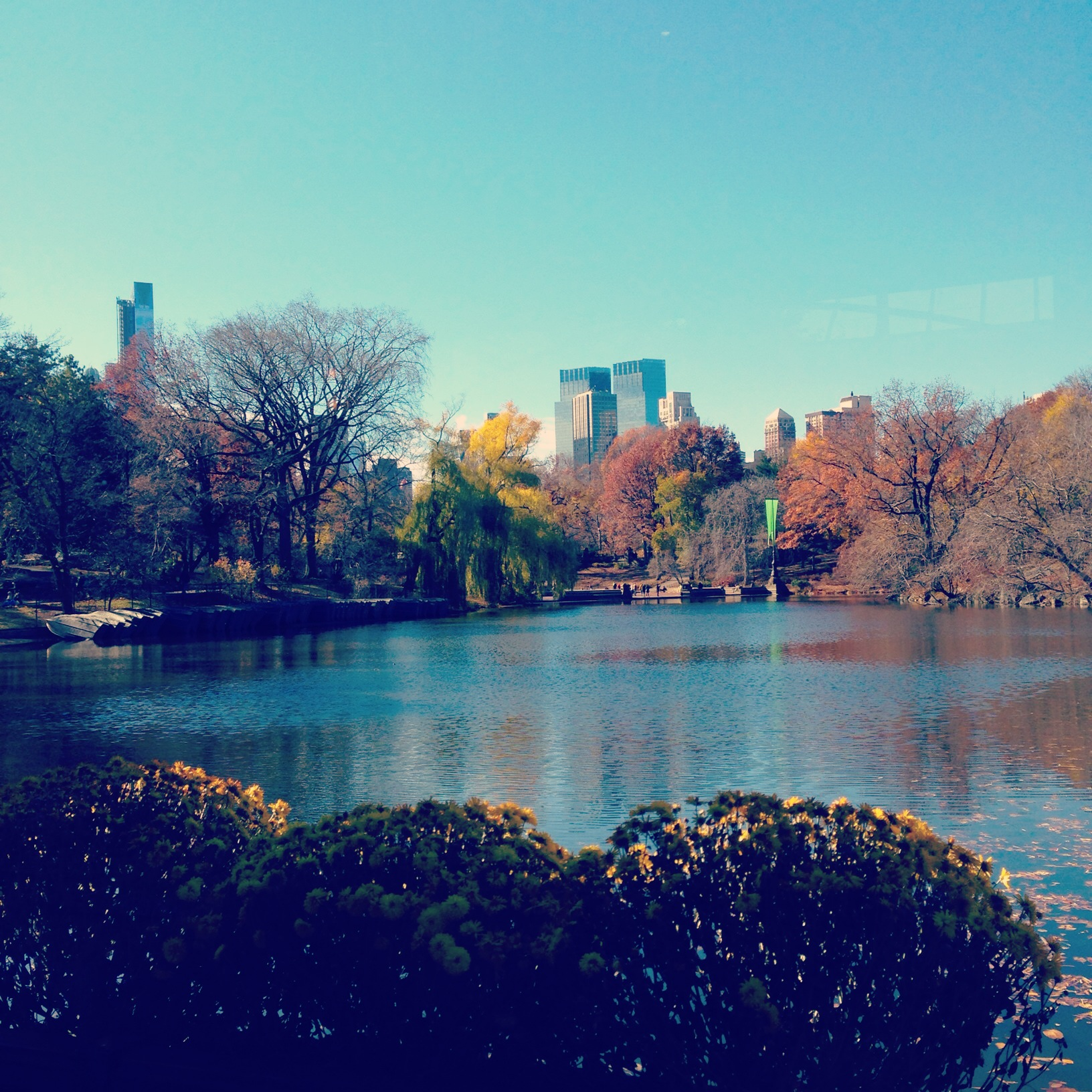 view from Central Park Boathouse