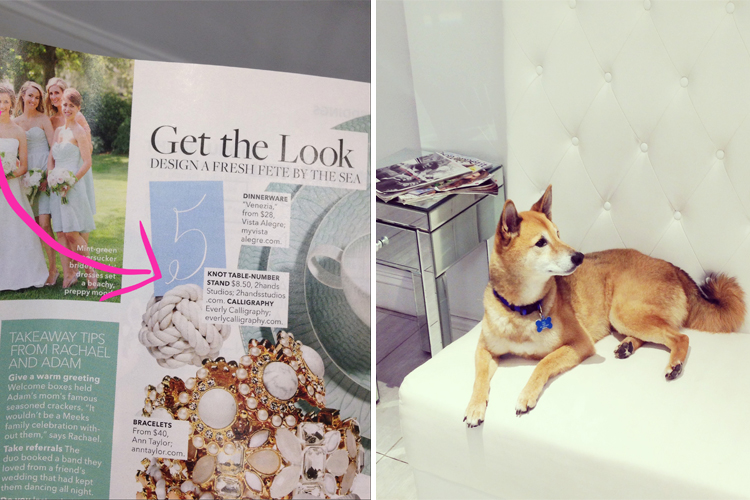 magazine & dog