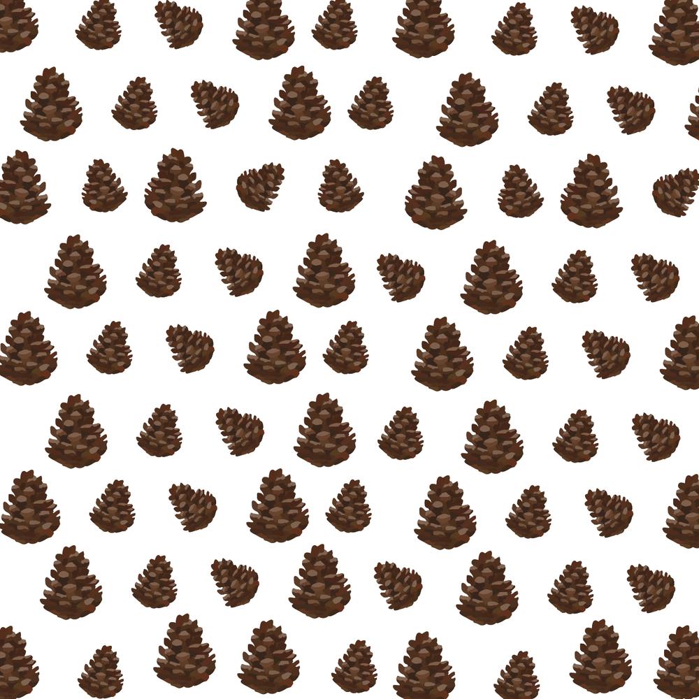 pinecones-01.png
