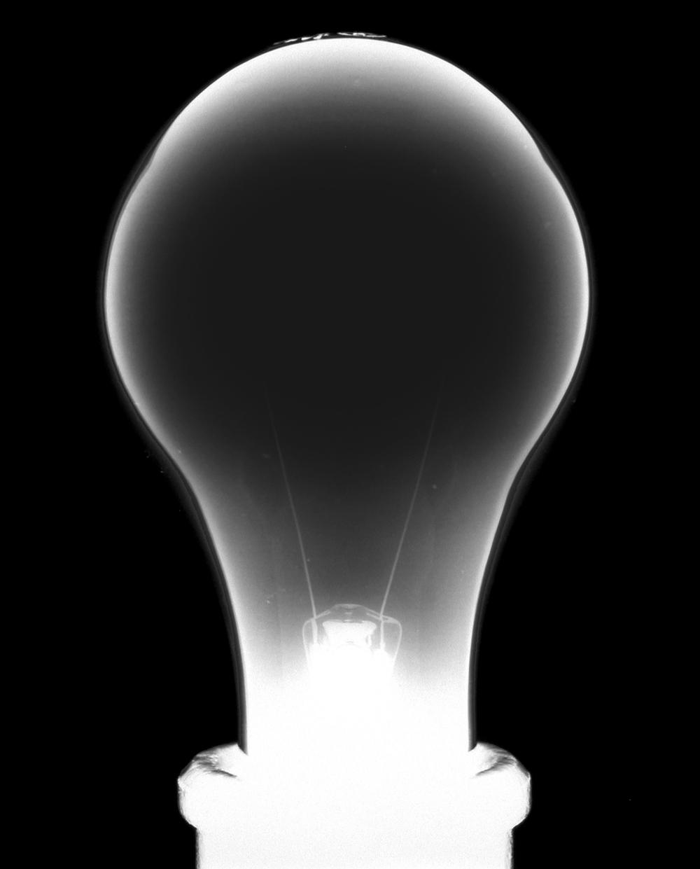 Light Bulb 2, 1998-2000