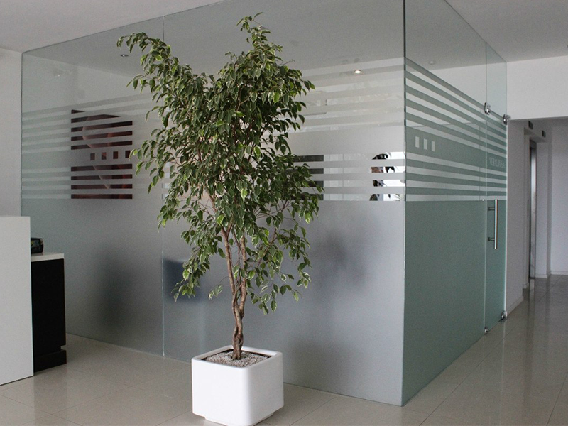 aplicacion-vidrio-esmerilado-003.png