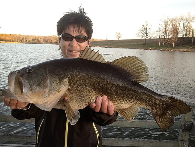big-fish03.jpg