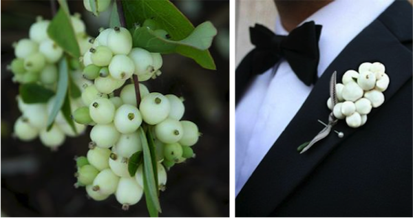 L:  The Wild Garden ; R:  Newport Wedding Glam