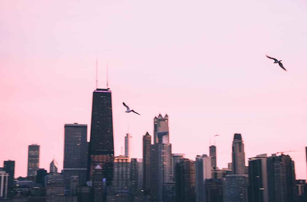 chicago-2-2.jpg