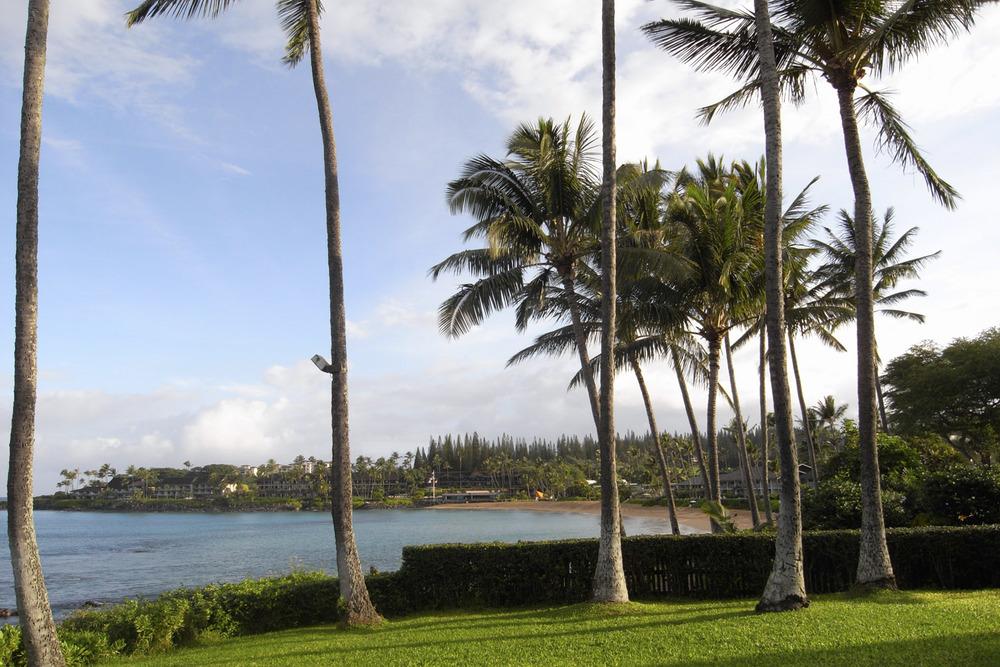 Napili, Maui, Hawaii, USA  Decembre 2008