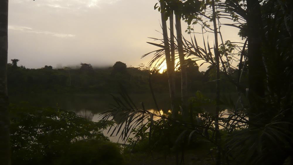 Bergendal, Suriname  -  Décembre 2012