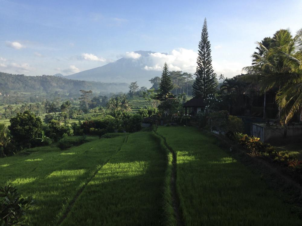 Sidemen, Bali, Indonésie  Novembre 2015
