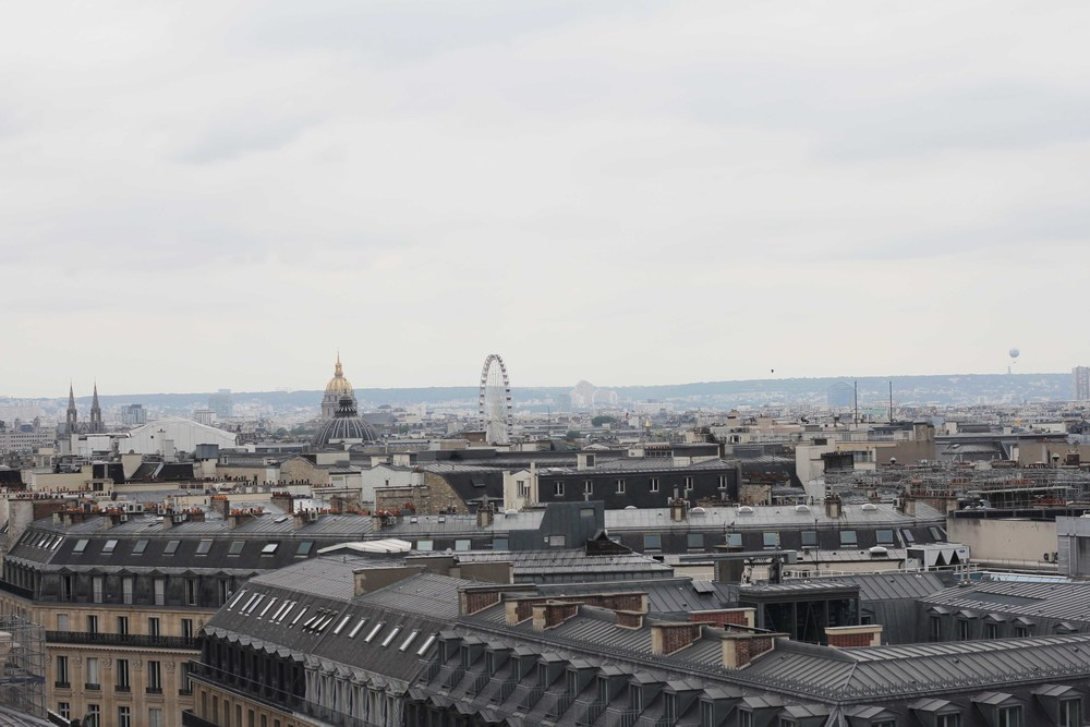 paris_rooftop_france