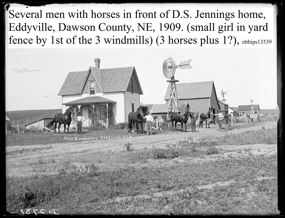 Butcher, Dawson County, Eddyville, Men and show horses, D.S. Jennings, 1909.jpg