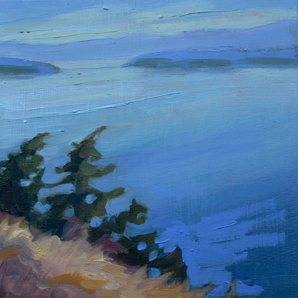 LOOKING at SALTSPRING ISLAND