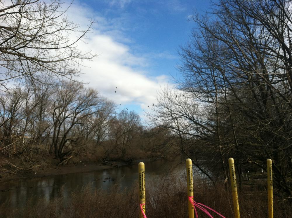 Darby Creek -- gas and geese.JPG