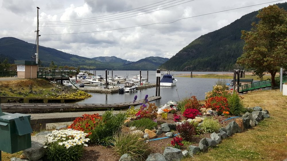 China Creek Marina and Campground is owned and operated by the Port Alberni Port Authority - a major sponsor of the Tri-Conic Challenge. A short 20 - 25 minute drive from the Harbour Quay area of Port Alberni will find you along the Alberni Inlet during the annual Sockeye Run. The campground offers upwards of 250 spots ranging from tenting along the Creekside to larger spots along the Inlet. We note that China Creek Marina and Campground is the destination for the ~ 16 k SPRINT BIKE RACE so it's a perfect location for those registrants, and others, to consider should you plan on camping. UPDATE AS OF JUNE 2017. Still lots of space available in this campground!