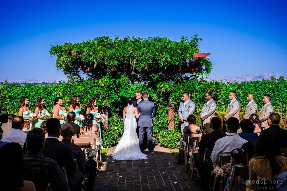 Bride and Groom Face Officiant at Pleasanton, California Wedding