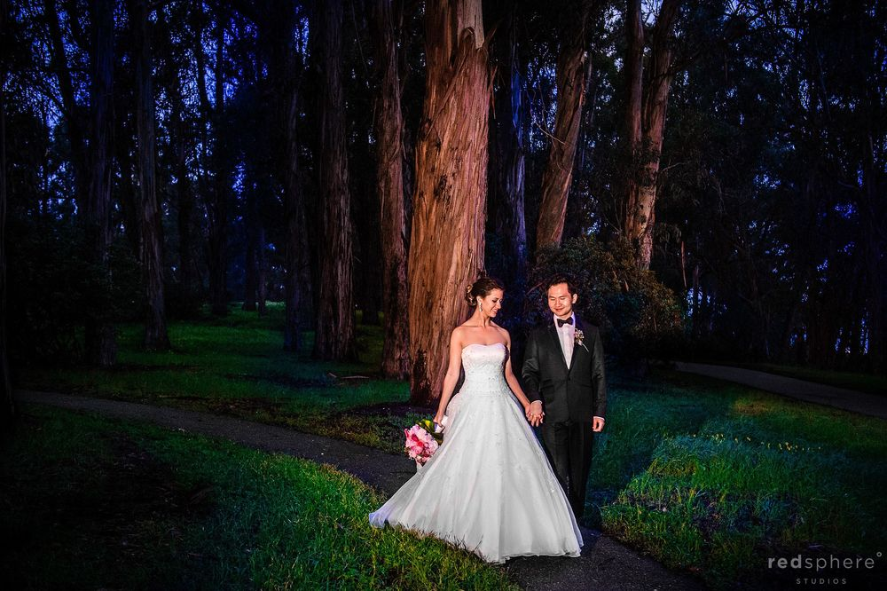 Coyote Point, San Mateo Wedding Session, Forest Photo