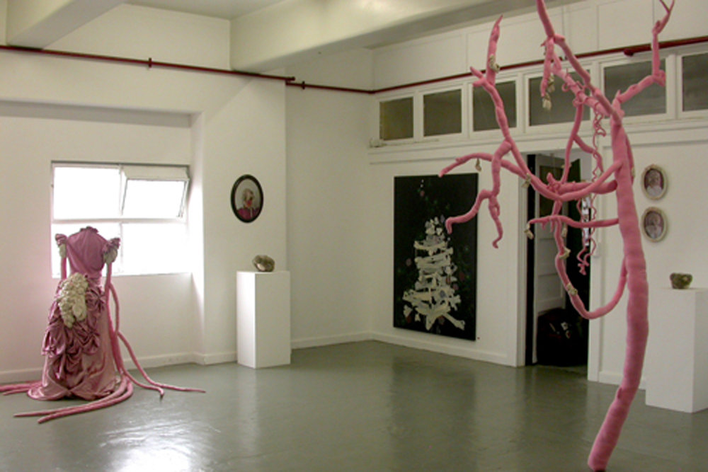 DRIPS AND THICKETS Kirra Jamison and Alice Lang 2007