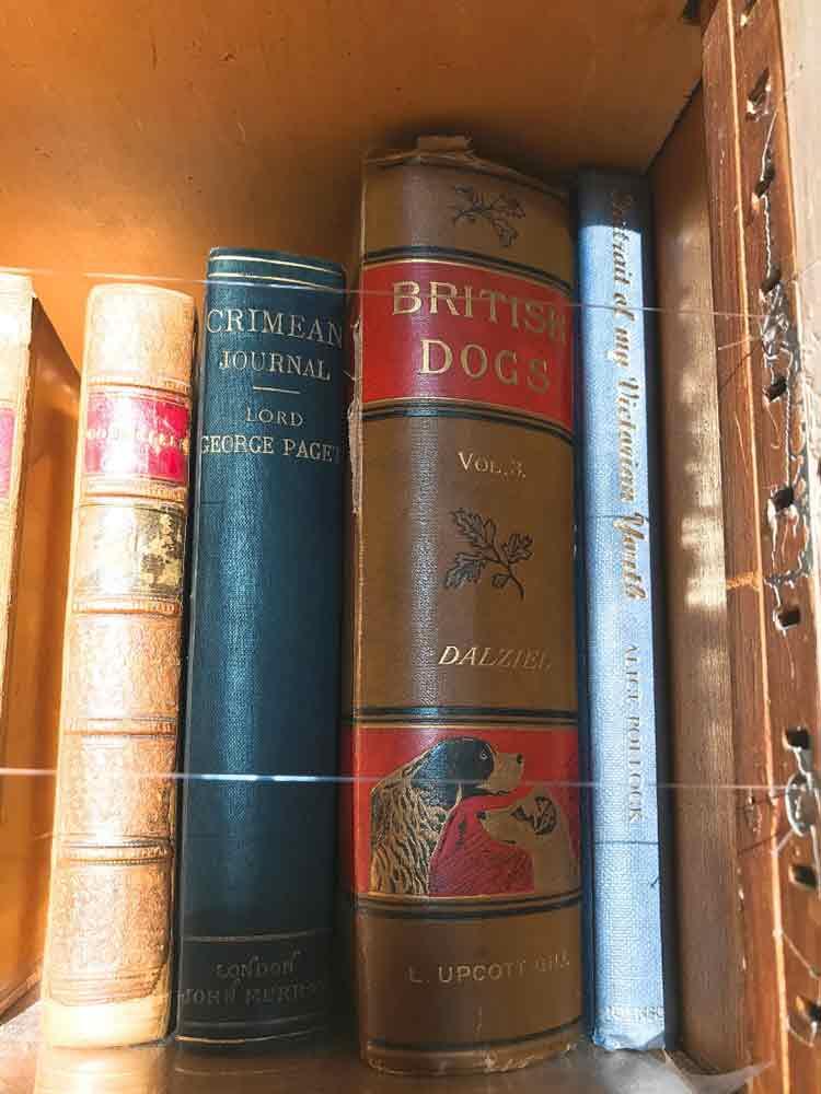 leeds-castle-library-books.jpg
