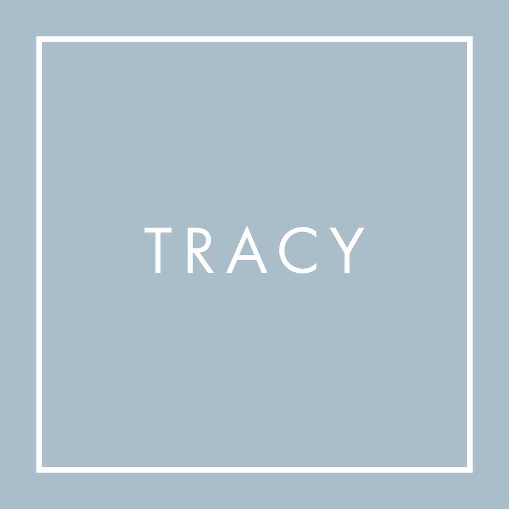 TracyWebsite client Portal.jpg