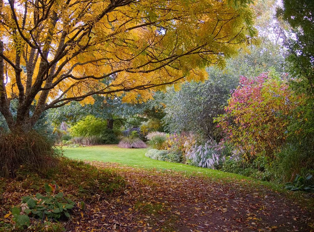 TASMANIAN ART & GARDEN ADVENTURE (NOVEMBER 18 - 26, 2018)     Tasmania, Australia   Explore quaint historic villages and beautiful gardens, while creating your own visual diary of the journey, under the guidance of artist David Keeling.   Read More