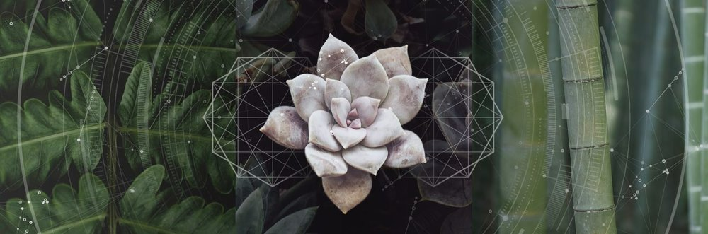Image Courtesy of Magdalena Sartori
