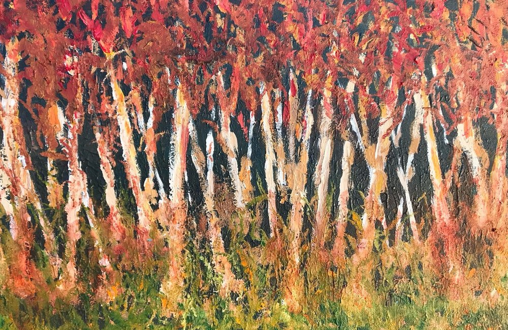 SILVER BIRCHES - Acrylic30'' x 20''** Gifted to Mary-Jane **