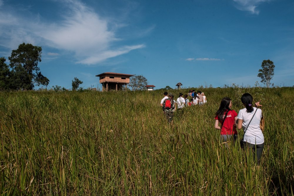 The objective is to reach the observation tower that overlooks a lake and salt lick to spot wildlife.
