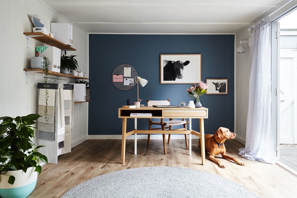 With plenty of natural light, a relaxing colour palette, a little greenery plus our pooch 'Max' the Hungarian Vizsla, the studio at Maitland Street Interiors is a relaxed and inspired space. Interior decoration & styling by Maitland Street Interiors. Pic by Stephanie Rooney.