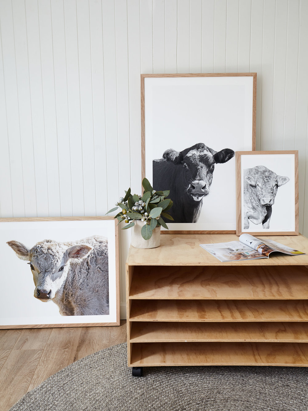 Maitland Street Interiors, Sarah Elshaug, Interior Stylist Melbourne, Elsie + Hugo, Limited Edition Artwork, Cow Prints