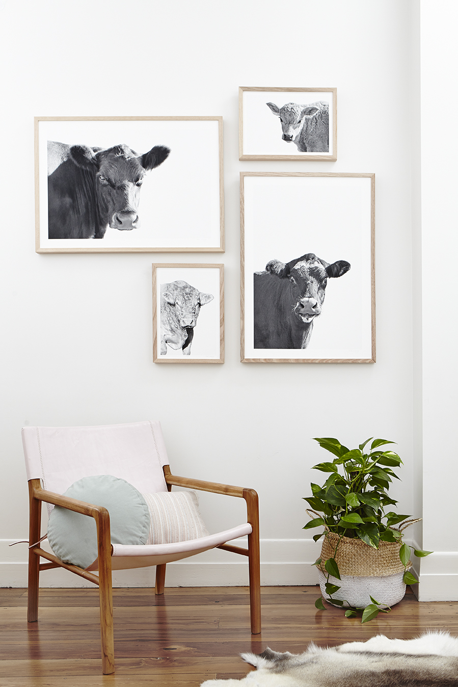 Elsie, Levi, Hugo & Molly : Styling by Maitland Street Interiors & Photography by Stephanie Rooney