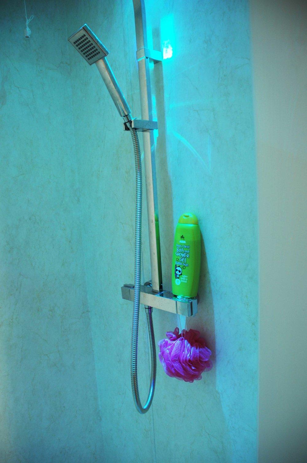 Shower-head-detail-opt.jpg