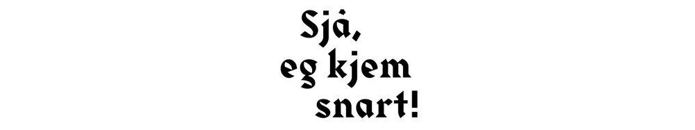 logo_hvit.jpg