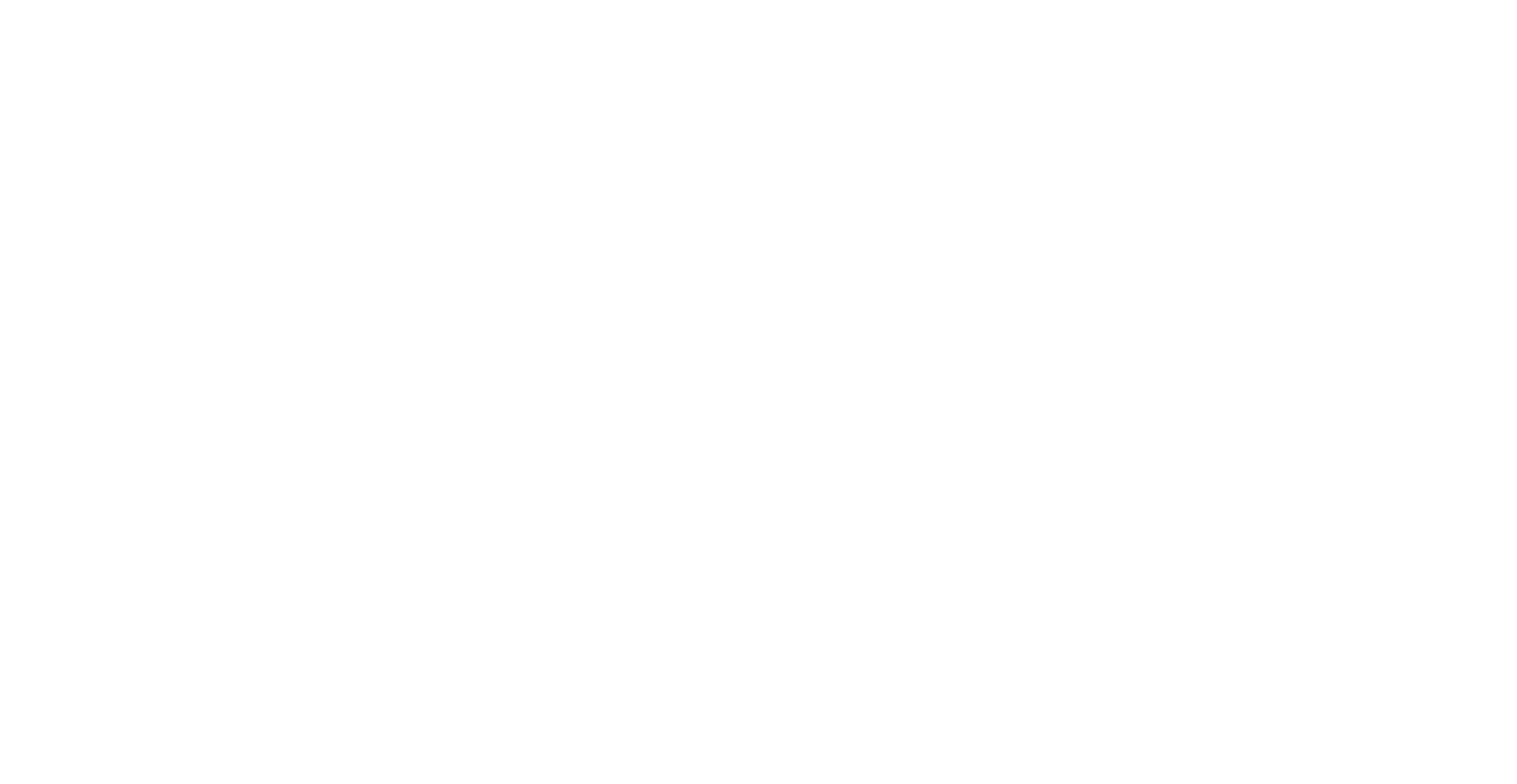 Mt. Desert Island Ice Cream